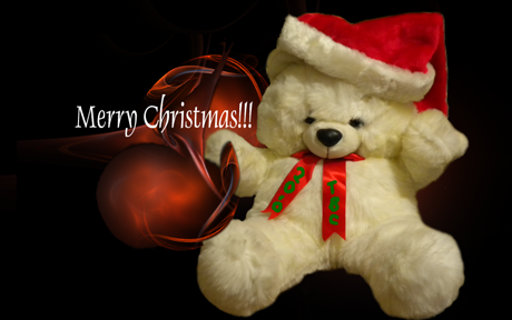 Teddybear  Christmas ID by teddybearcholla