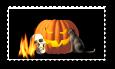 Halloween by teddybearcholla