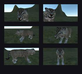 Leopard first Texture