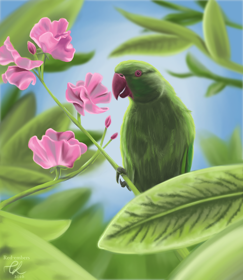 There's a Parakeet in my Garden by red-embers