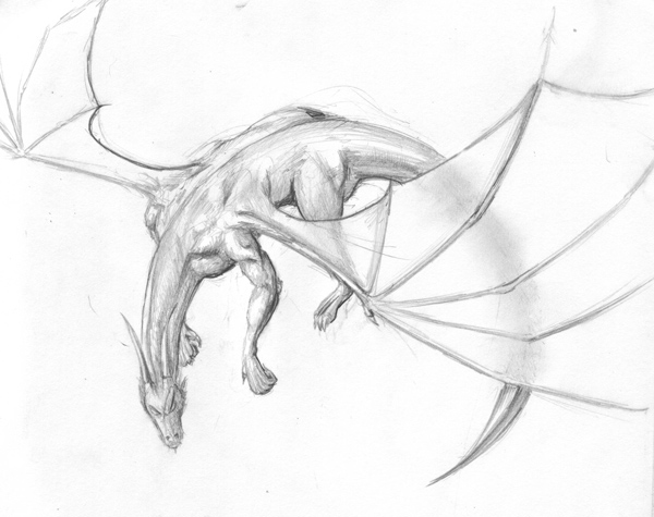 Dragon in mid flight by halcyondf on deviantart dragon in mid flight by halcyondf ccuart Image collections