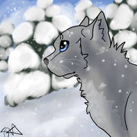 The Snow May Storm- Redo by TheFallenWhisper