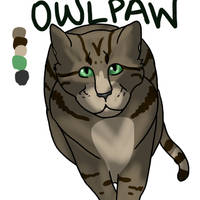 Owlpaw Reference Sheet by TheFallenWhisper