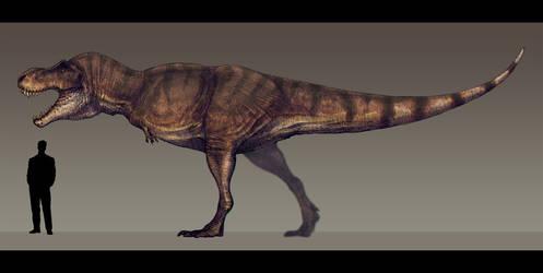 Tyrannosaurus rex by Paleocolour