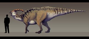 Parasaurolophus walkeri by Paleocolour