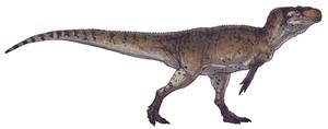 Piatnitzkysaurus floresi by Paleocolour