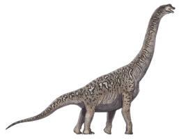 Soriatitan golmayensis by Paleocolour