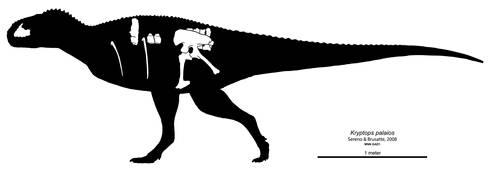Kryptops palaios Skeletal Diagram by Paleocolour