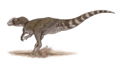 Chuandongocoelurus primitivus by Paleocolour