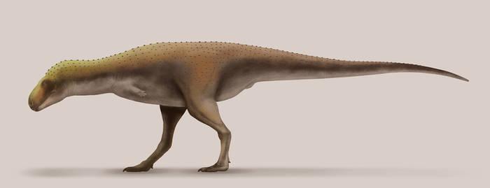 Rahiolisaurus gujaratensis by Paleocolour