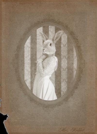 Victorian Portraits: Mrs. Rabbit by Violet-kill