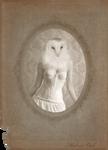 Victorian Portraits: Madame Owl