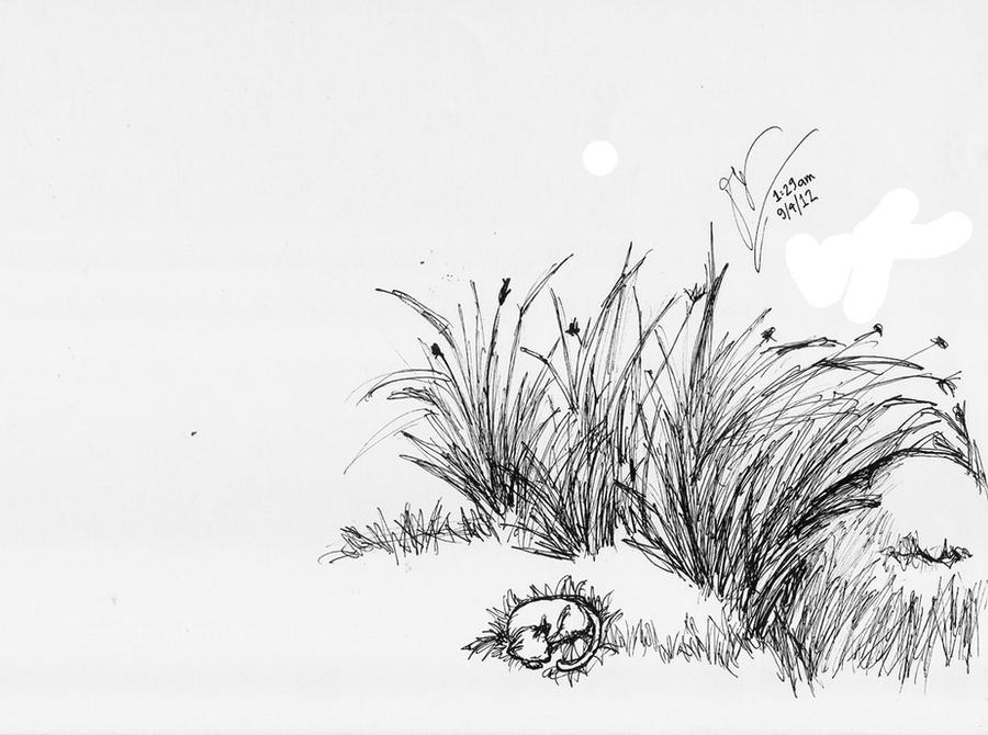 sketch ink grass rock kitty by Draconica5 on DeviantArt