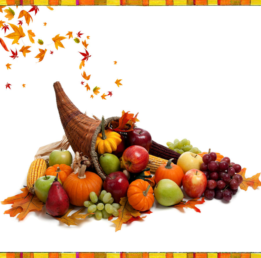 http://fc01.deviantart.net/fs71/i/2010/306/9/c/thanksgiving_day__cornucopia_by_ritaflowers-d3218su.jpg