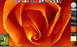 Screen Vista 15.05.09