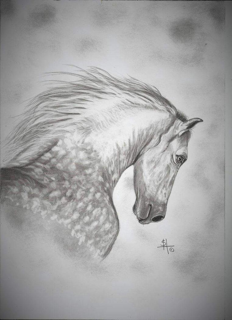 Dappled Grey by Shazhutch