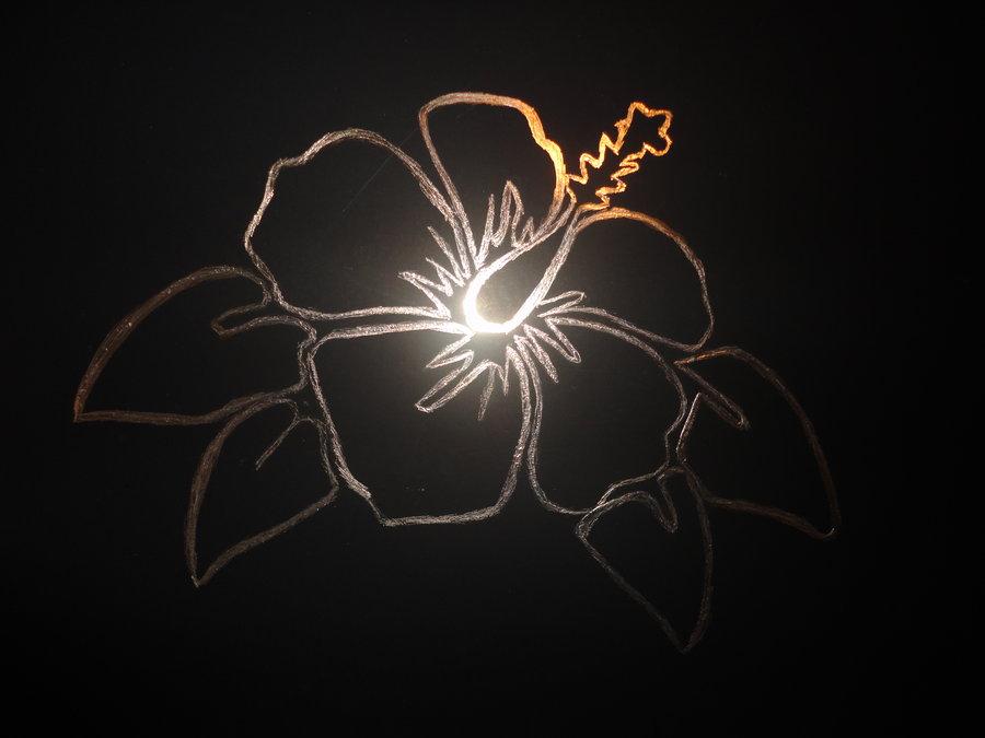 Hibiscus Flower By Steelersgurl912