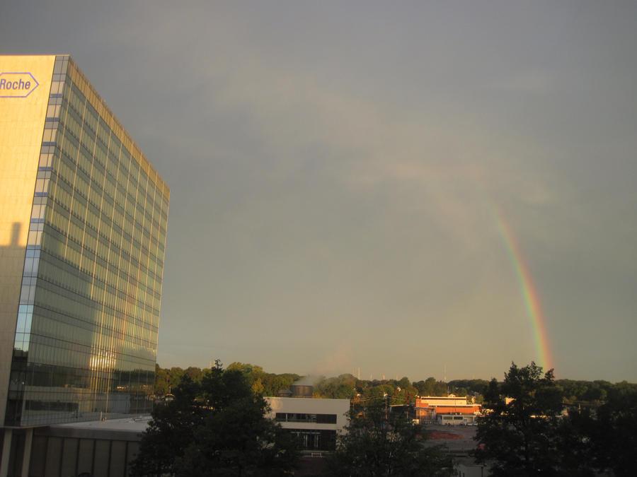 Rainbow by jswis