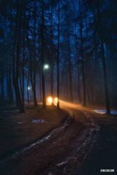 Night by zewlean
