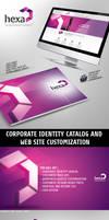 Hexa Corporate Identity v8