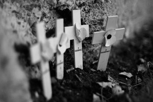 Crosses at Tyne Cot