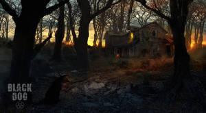 Black Dog - House On Briar Ridge