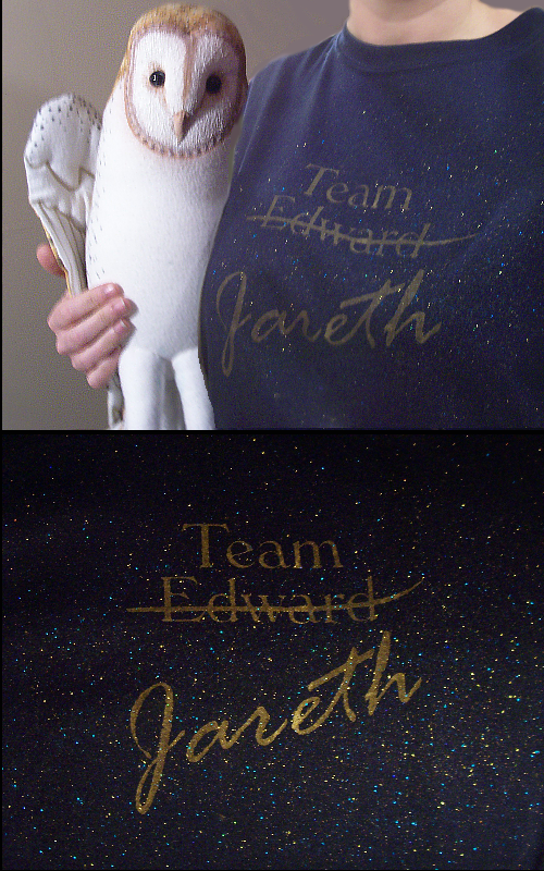 Team Jareth Glitter Shirt by TheCopperDragon2004