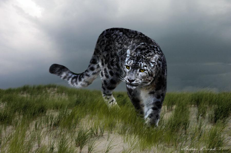 The Stalking Nundu by TheCopperDragon2004