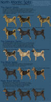 Color and Pattern Guide Part II by sazzy-riza