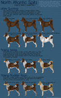 Color and Pattern Guide Part IV by sazzy-riza