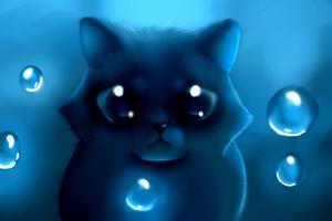 Kitty by xXLegendary-FuryXx