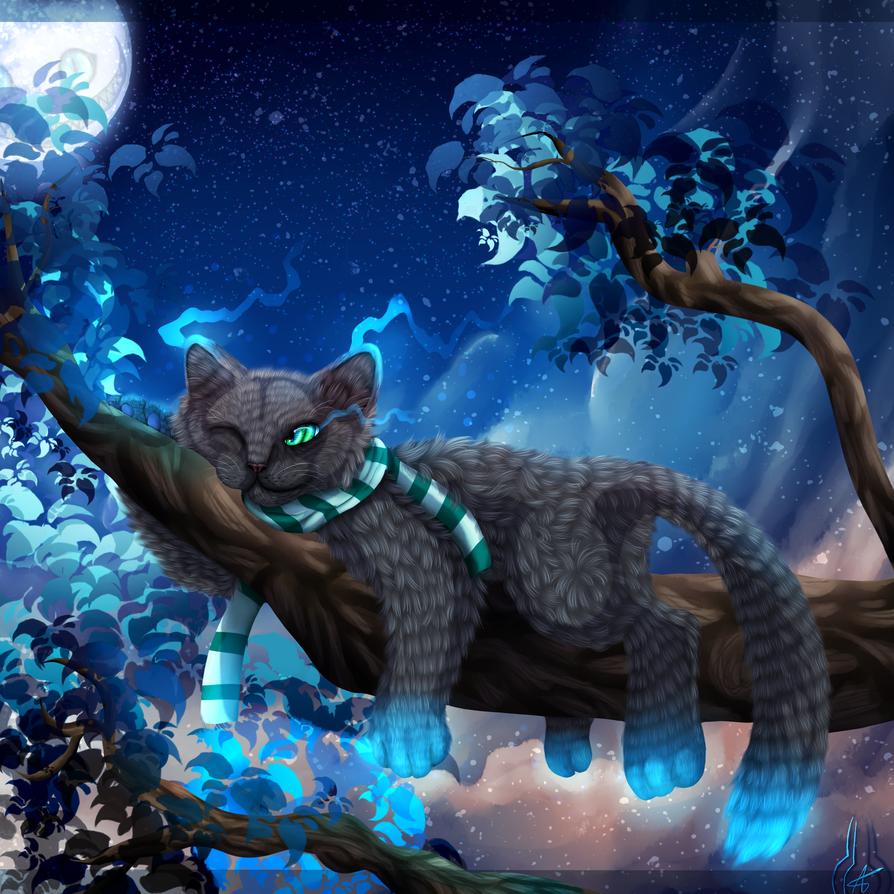 Magic Night by xXLegendary-FuryXx