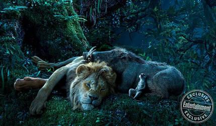 Lion King 2019 The Trio watch the stars by LopDrieuna