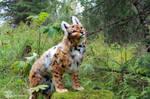 Fantasy Lynx