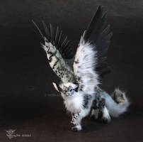 Winged Snow Leopard