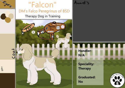 DM's Falco Peregrinus of BSD (Falcon)