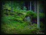 a swedish troll-forest 1