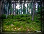 a swedish troll-forest 2