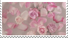 f2u - Pink aesthetic stamp #23 by Pastel--Galaxies