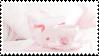 f2u - Pink aesthetic stamp #50 by Pastel--Galaxies