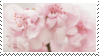 f2u - Pink aesthetic stamp #52 by Pastel--Galaxies