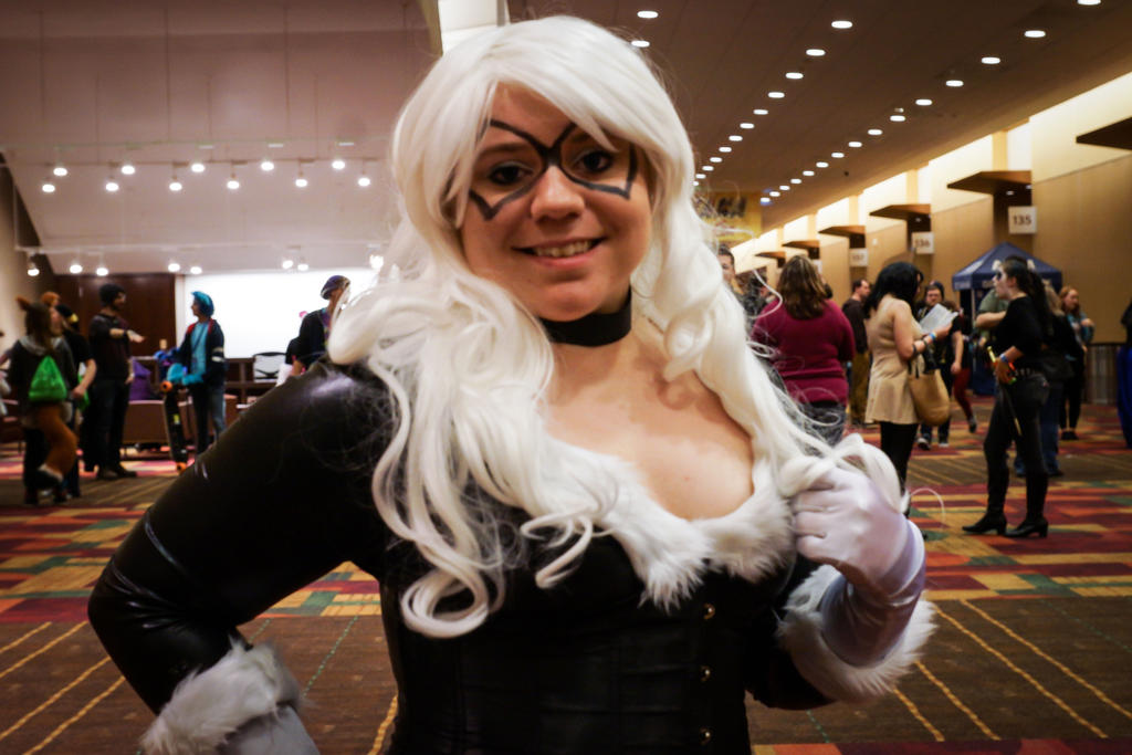 Indiana Comic Con Black Cat 2 by SirKirkules