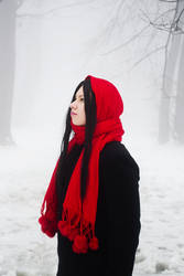 Winter Red - Cold Remembrance by nemesisz-moon