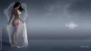 venus wallpaper