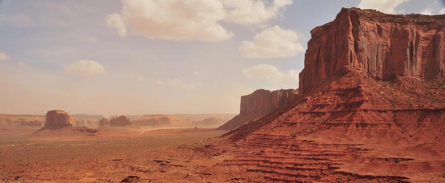 Desert stock