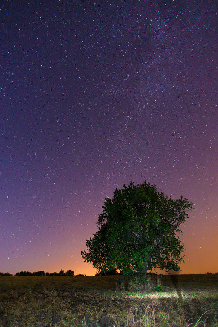 Sky full with tiny stars by JosivBG