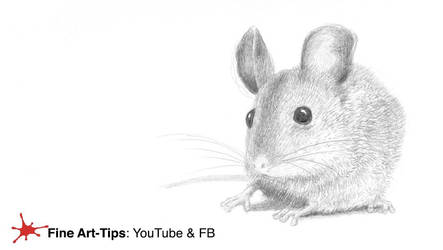 HOW TO DRAW A MOUSE - Easy and realistic