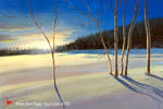 HOW TO PAINT A XMAS LANDSCAPE IN ACRYLICS - Painti