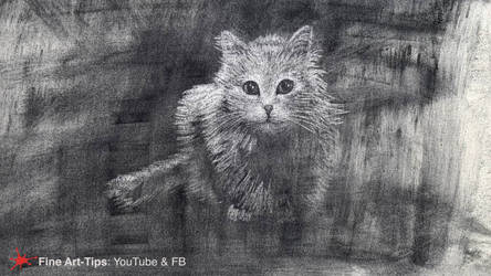HOW TO DRAW A CAT WITH CHARCOAL POWDER AND ERASER