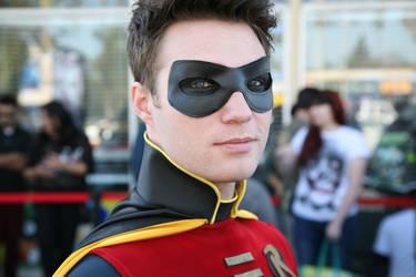 Robin: The Return